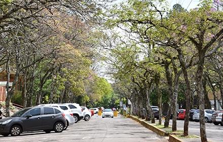 upf-campus