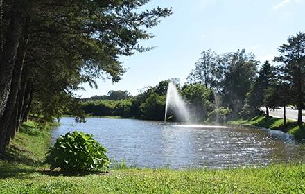 upf-campus-lagoa